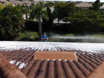 Roof Soft Wash