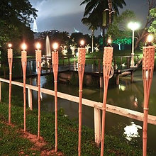 5ft  Bamboo Torch