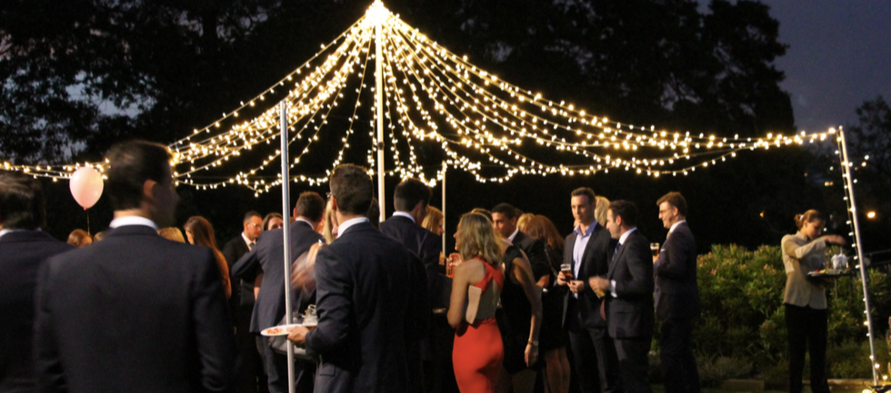 Fairy light canopy outdoor.png