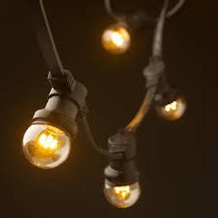 Festoon Lighting Warm White Bulbs