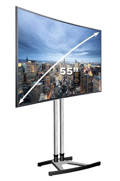"55"" LED Screen (TV)"