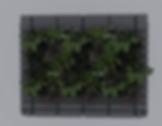 Rainwater & Living wall
