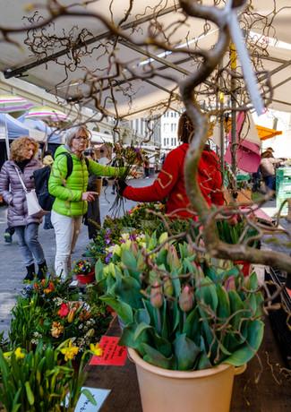 Saisonale Blumen vom Wochenmarkt