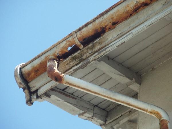 Dach Sanierung
