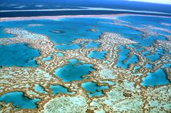 RCI_Great Barrier Reef, Snorkelling CN01 3.jpg