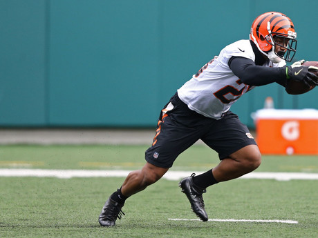 "Bengals rookie running back Joe Mixon ""looks like a beast"" in practices"