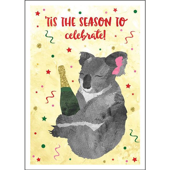 CP274-Celebrating-Koalaa.jpg