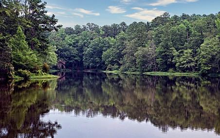 Callaway Garden Georgia Lake View