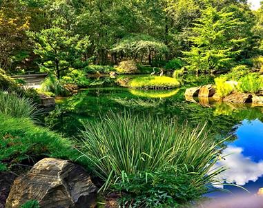 Japanese Garden at Gibbs Garden