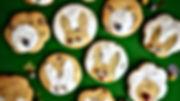 Choc Chip & Orange biscuits.jpg