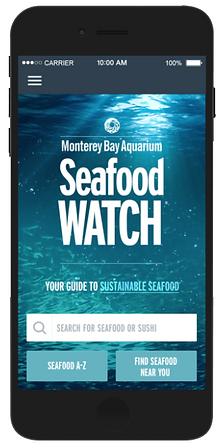 The Seafood Watch App – Easy Guide to Sustainable Seafood