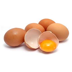 Free range eggs.jpg