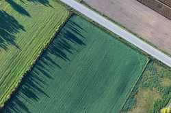 Aerial Photo of a Field