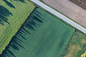 Drone photography a hedge shadows on fields