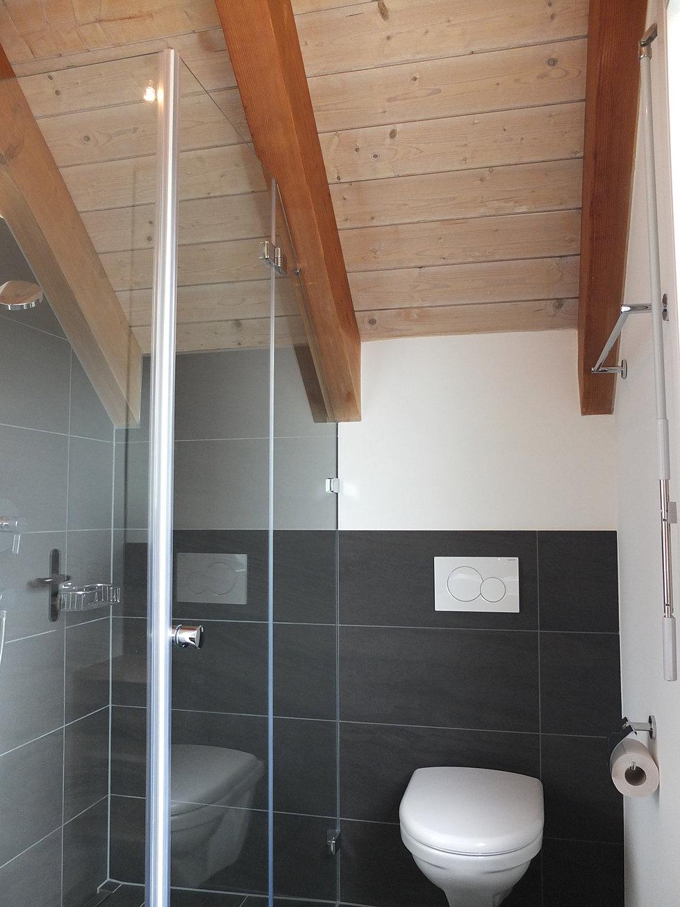 badezimmer umbau ideen perfekte kleine dusche ideen auf. Black Bedroom Furniture Sets. Home Design Ideas