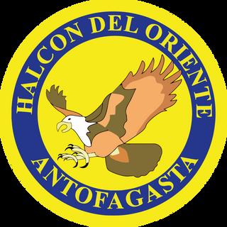 Halcon del Oriente