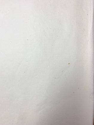 平成8年製 純三椏 薄口 2×3判5枚