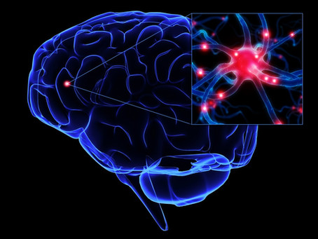 Stem Cells treatment for addiction related brain damages