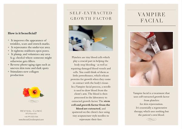 vampire brochure 1.png