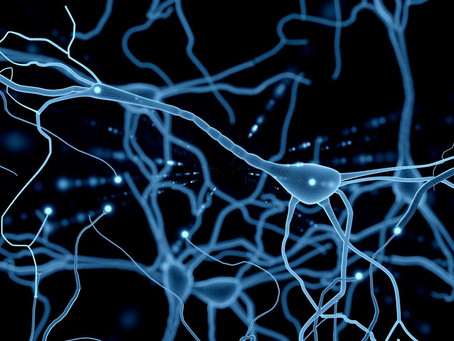 Placenta Extract and Neuropathy
