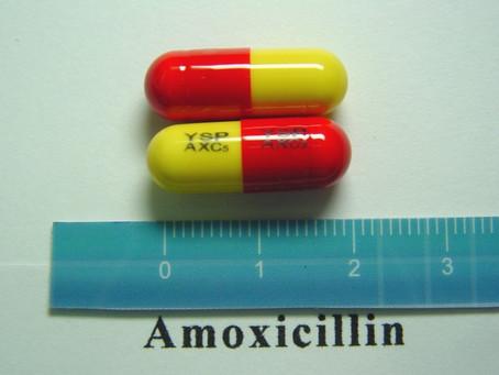 ยาฆ่าเชื้อ Amoxycillin