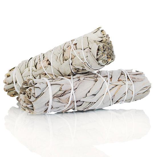 Wild White Sage Bundle (3-5in.)