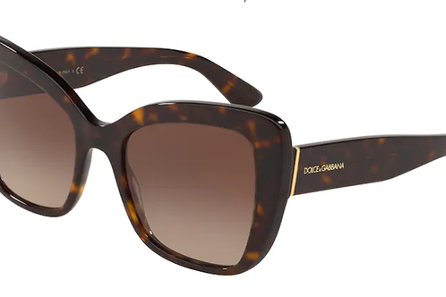 Dolce & Gabbana - Havana - Lente Marrom Escuro - 4348502/1354
