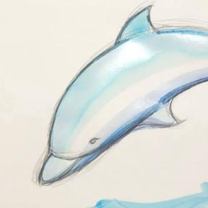 Dolphin Tutorial