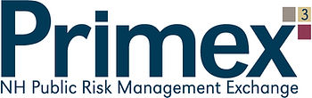 Gold Primex Logo.jpg