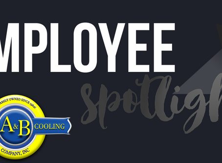 Employee Spotlight // May 2017