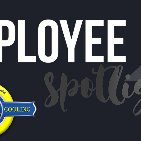 Employee Spotlight // July 2017