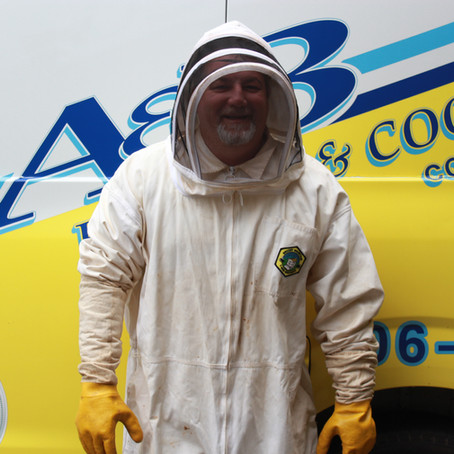 Master Technician or Master Yellow Jacket Whisperer?