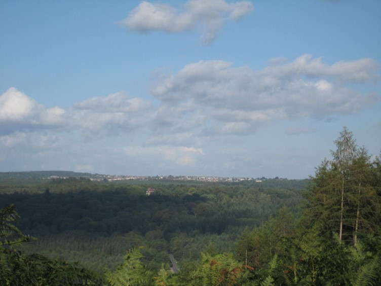 Views across the Forest of Dean on the Beechenhurst Trail