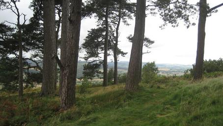 WALK | Sampling the Mortimer Trail at Croft Ambrey | Herefordshire