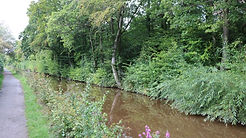 A Walk on the Monmouthshire and Brecon Canal