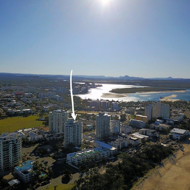 48 / 62 SIXTH AVE COTTON TREE