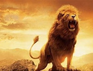 Lion King of the Jungle - The Spirit of Leadership