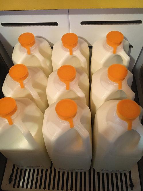 Farm Fresh Raw Milk 1/2 Gallon