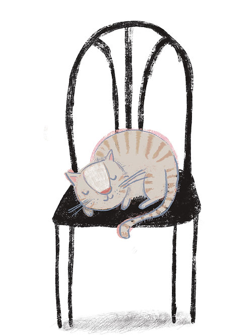 sleeping cat, poster 30x40 cm