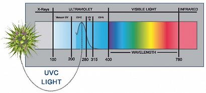 UVC-light.png