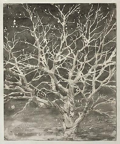 Marble Tree.jpg