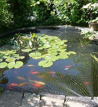 New Garden 09 026.jpg