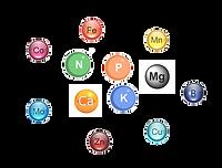 Удобрения на основе макроэлементов и микроэлеметов. Удобренияв Молдове, Кишиневе. PRODCOM FIT SRL