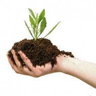 Срества защиты растений и уобрения в Молдове от фирмы PRODCOM FIT SRL