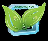PRODCOM FIT SRL Инсектициды, фунгициды, гербициды, семена, купить в Молдове