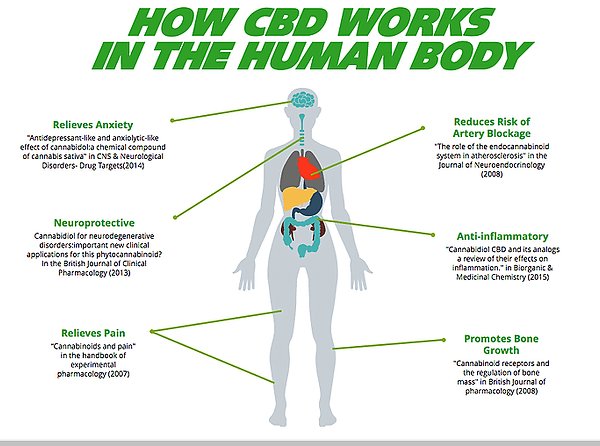 HEMPWORX WORKS ON THE BODY.png