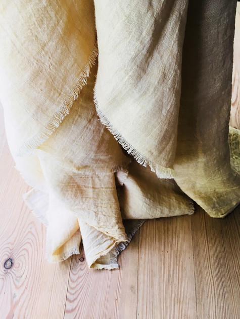 liście wierzby kruchej - fragile willow leaves 04 SPRZEDANE_SOLD