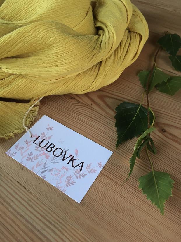 liście brzozy - birch leaves_08