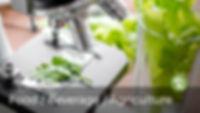 Food & Beverage Science Tech