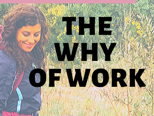 The why of work: limitations, desires, actions